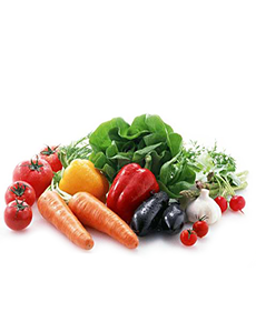 首页产品-食品冷库